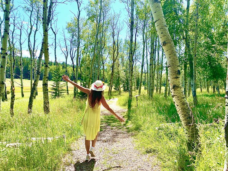 backroads with betsy sturgis 2020 pathways spiritual sanctuary
