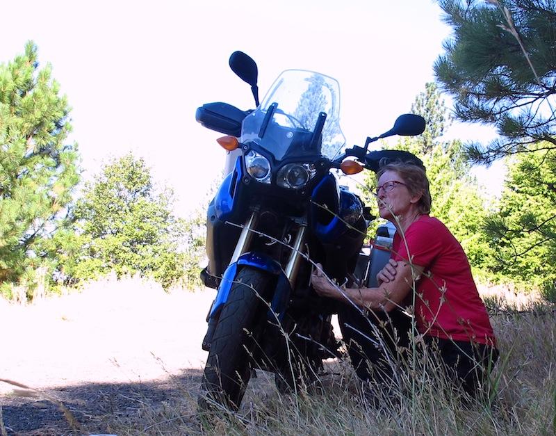 Safe Riding Motorcycle Mishap Damage Yamaha Ténéré