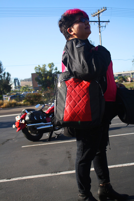 review the lauren bag by motochic tote