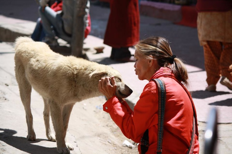 Backroads with Betsy Motorcycling in the Himalayas petting dog