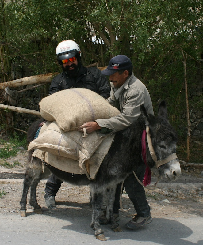 Backroads with Betsy Motorcycling in the Himalayas roadside donkey
