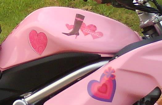 She Loves Pink and She loves Barbie Ninja 650