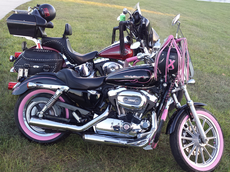 pink motorcycles sportster 1200 breast cancer