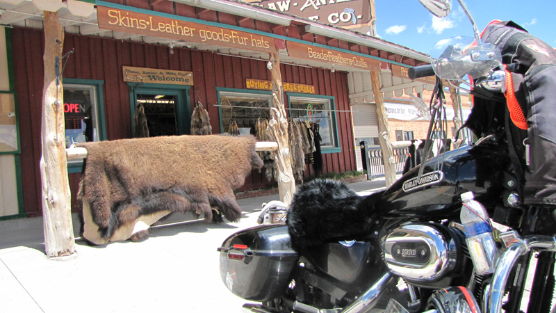 Solo Road Trip on a Motorcycle Alone But Never Lonely Sportster Sheepskin Seat Cover