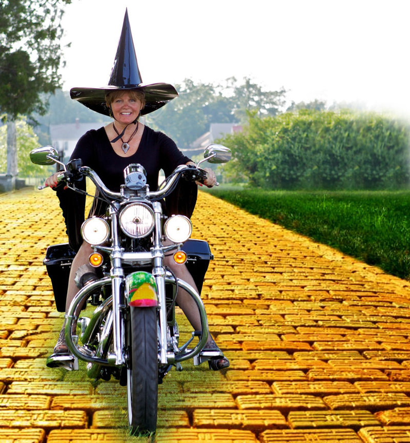 your motorcycles a wicked sportster yellow brick road