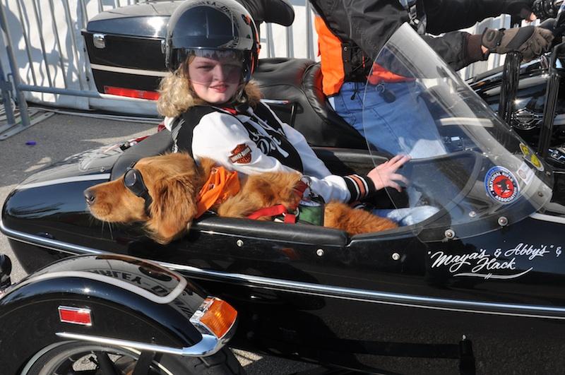 harley davidson MDA womens ride dog