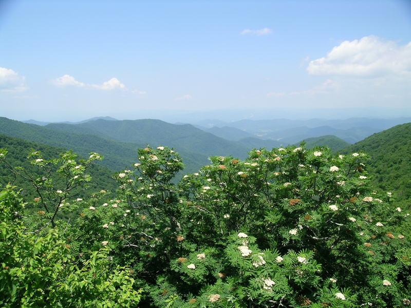 4 bucket list motorcycle rides in the east blue ridge parkway mountains
