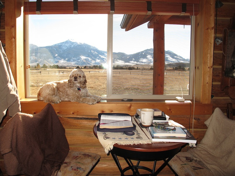 everyday miracles limiting distractions to receive mountainview window