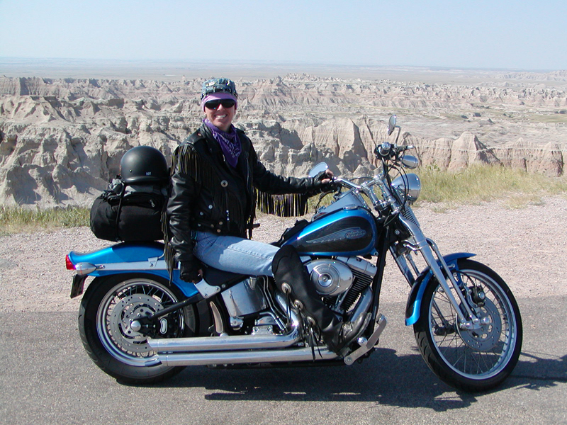 your motorcycles my custom sparkling violet springer softail 2004