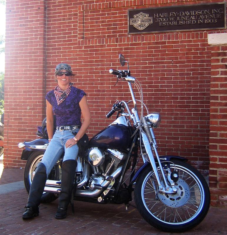 your motorcycles my custom sparkling violet springer softail jen snyder