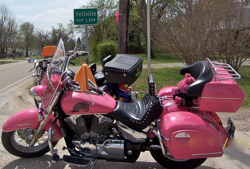 your motorcycles: hippochicks pink honda vtx 1300s left