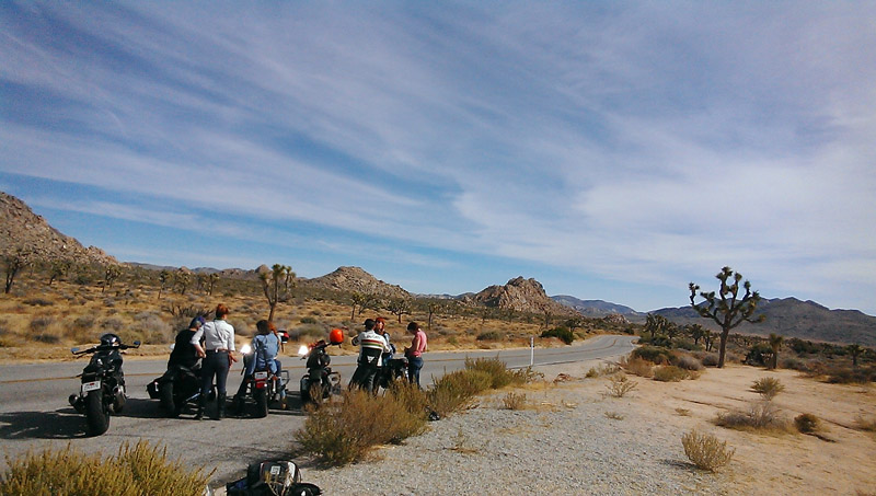 babes ride out all women motorcycling event makes history joshua tree park