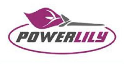 gas tank mentorship program for women entrepreneurs powerlily logo