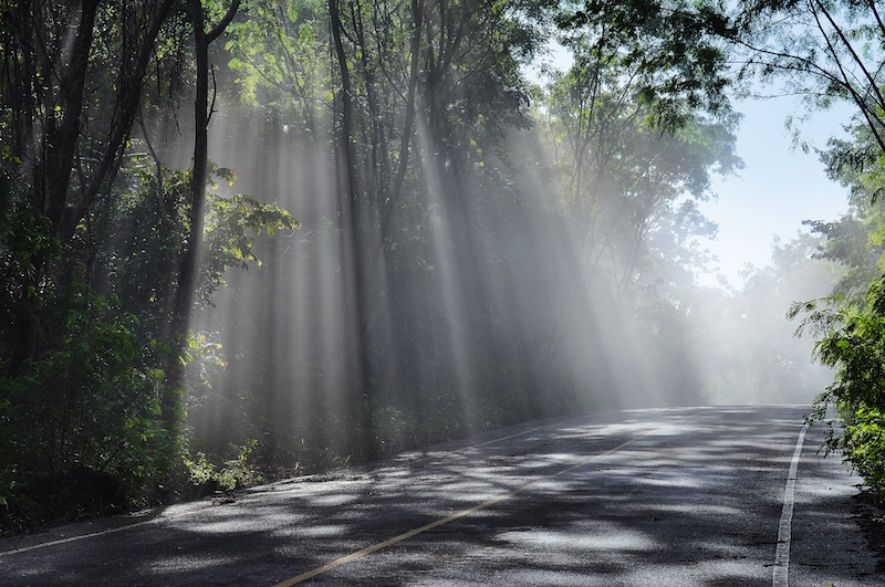 everyday miracles limiting distractions to receive sunrays