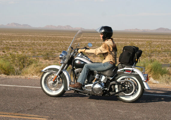 Softail_Deluxe